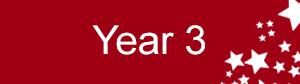Year3