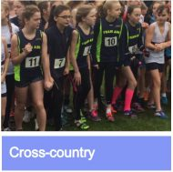 Cross-country link