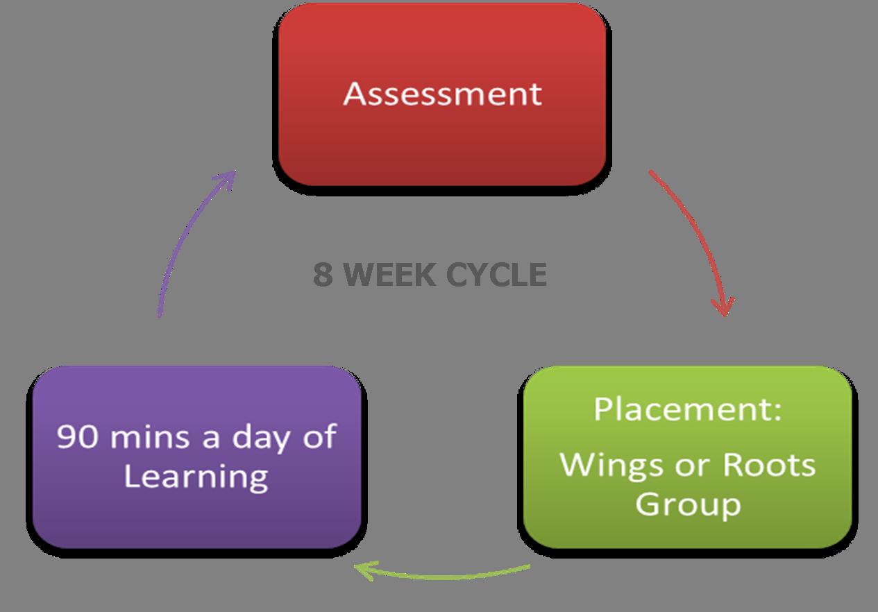 SFA Cycle