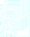 Mullion School Logo